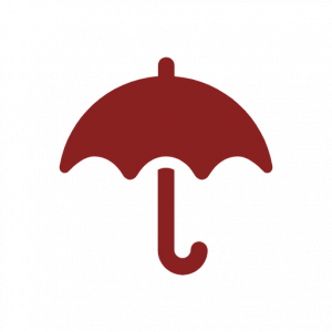Resilience and Adaptability icon